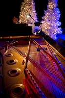 The Spirit of Christmas Variety Show - 2015